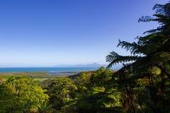 vista sopra il parco nazionale di Daintree durante il tramonto, tribolazione del capo, Australia fotografia stock libera da diritti