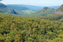 Vista sopra il parco nazionale di Lamington in Australia Fotografia Stock