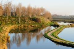 Vista sopra il polder in Sluis, Paesi Bassi fotografia stock libera da diritti