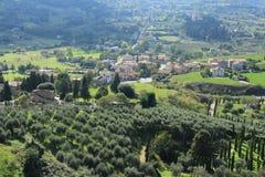 Vista sopra il villaggio con gli oliva-alberi ed il cipresso dalla cima del villaggio Orvieto in Italia di estate Immagine Stock