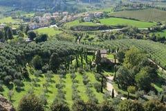 Vista sopra il villaggio con gli oliva-alberi ed il cipresso dalla cima del villaggio Orvieto in Italia di estate Fotografie Stock