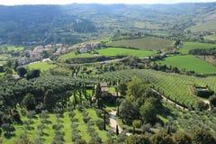 Vista sopra il villaggio con gli oliva-alberi ed il cipresso dalla cima del villaggio Orvieto in Italia di estate Fotografia Stock