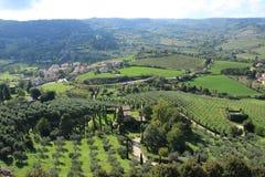 Vista sopra il villaggio con gli oliva-alberi ed il cipresso dalla cima del villaggio Orvieto in Italia di estate Fotografia Stock Libera da Diritti