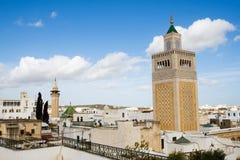 Vista sopra la città storica di Tunisi Immagine Stock Libera da Diritti