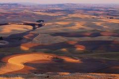 Vista sopra la rappezzatura delle aziende agricole in autunno al tramonto, valle di Palouse Immagine Stock