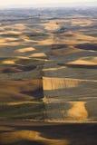 Vista sopra la rappezzatura delle aziende agricole in autunno, valle di Palouse, orientale Fotografia Stock