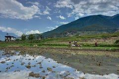 Vista sopra le montagne nel Bhutan Immagine Stock