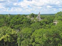 Vista sopra le vecchie rovine del maya immagini stock libere da diritti