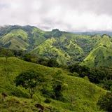 Vista sopra Monteverde Immagine Stock