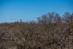 Vista sopra una foresta della parte in molla in anticipo Una torre di pietra nella distanza fotografia stock