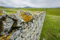 Vista sopra una parete drystone in Scozia del Nord Fotografie Stock Libere da Diritti
