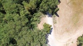 Vista sopraelevata della vegetazione della campagna della Toscana, Italia Fotografia Stock Libera da Diritti