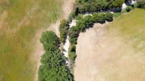 Vista sopraelevata della vegetazione della campagna della Toscana, Italia Immagine Stock