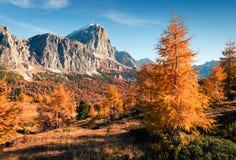 Vista splendida dalla cima del passaggio di Falzarego con la montagna di Lagazuoi fotografie stock libere da diritti
