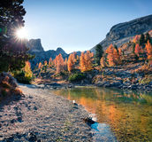 Vista splendida del lago Limides Mattina variopinta di autunno nelle alpi della dolomia, passaggio di Falzarego, lacattion di Amp Fotografia Stock Libera da Diritti