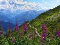 Vista splendida nelle alpi svizzere Immagini Stock