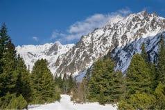 Vista strabiliante delle montagne nevose Fotografie Stock Libere da Diritti
