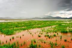 Vista stupefacente del lago un giorno piovoso, provincia lak di Dak Lak Fotografie Stock