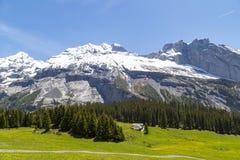 Vista stupefacente delle alpi e dei prati svizzeri vicino a Oeschinensee (lago Oeschinen), su Bernese Oberland, la Svizzera Immagini Stock Libere da Diritti