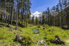 Vista stupefacente delle alpi e dei prati svizzeri vicino a Oeschinensee (lago Oeschinen), su Bernese Oberland, la Svizzera Fotografie Stock