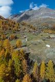 Vista stupefacente delle alpi svizzere, cantone di autunno del Valais Fotografia Stock Libera da Diritti