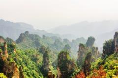 Vista stupefacente delle colonne naturali boscose dell'arenaria del quarzo fotografia stock libera da diritti