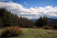 Vista stupefacente delle montagne di Rhodope in Bulgaria Immagine Stock