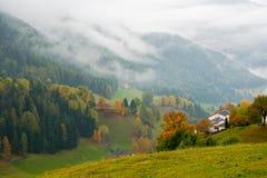 Vista stupefacente delle montagne in nebbia e della foresta variopinta di caduta nelle alpi della dolomia, Italia Immagine Stock Libera da Diritti