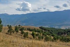 Vista stupefacente di paesaggio verde della montagna di Ograzhden Fotografia Stock