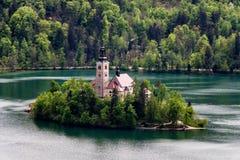 Vista stupefacente sul lago, sull'isola, sulla chiesa e sul castello sanguinati con Mountai Immagine Stock