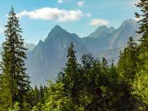 Vista su alto Tatras in Polonia dall'itinerario al lago di oko di Morskie in Polonia Immagini Stock Libere da Diritti