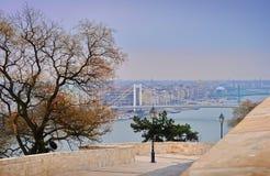 Vista su Elisabeth Bridge e sul fiume Danubio immagini stock libere da diritti