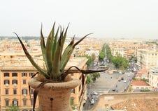 Vista su Roma dal museo del Vaticano Fotografie Stock