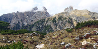 Vista su un fronte della montagna nelle alpi italiane (dolomia) Fotografia Stock Libera da Diritti