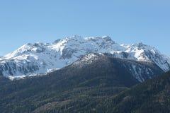 Vista su una foresta e su una montagna innevata sulle alpi italiane Fotografia Stock Libera da Diritti