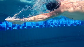 Vista subacuática de la natación del hombre almacen de video