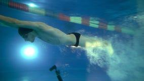 Vista subaquática ao mergulho profissional bonito do nadador na associação e nadadas acima do fotógrafo Subaquático video estoque