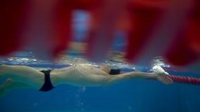 Vista subaquática ao nadador profissional que nada rapidamente a costas na associação vídeos de arquivo