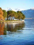 Vista sugli alberi che riflettono in un lago immagine stock libera da diritti