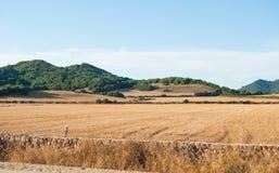 Vista sui campi e sulle colline verdi coltivati Immagini Stock