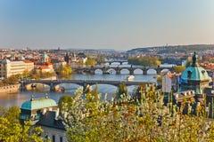 Vista sui ponticelli di Praga Fotografie Stock