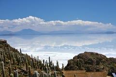 Vista sui saltflats di Salar de uyuni dall'isola del ` s del pescatore in Bolivia Immagine Stock Libera da Diritti