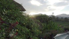 Vista sui terrazzi del riso della montagna e sulla casa degli agricoltori durante la pioggia Bali, Indonesia stock footage