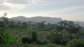 Vista sui terrazzi del riso della montagna e sulla casa degli agricoltori durante la pioggia Bali, Indonesia archivi video