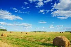 Vista sul campo con le balle di paglia in autunno Fotografie Stock