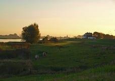 Vista sul fiume Immagine Stock