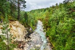 Vista sul fiume di Kyngyrga Arshan La Russia Fotografie Stock Libere da Diritti