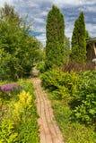 Vista sul giardino verde domestico immagine stock libera da diritti