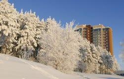 Vista sul grattacielo di appartamento moderno attraverso la foresta nevosa nel giorno soleggiato di inverno Fotografia Stock Libera da Diritti