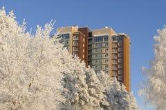 Vista sul grattacielo di appartamento moderno attraverso la foresta nevosa nel giorno soleggiato di inverno Fotografia Stock